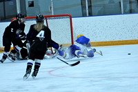Girls JV Hockey vs East Ridge 11/10/11