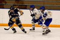 Boys JV Hockey vs Rosemount 11/29/14